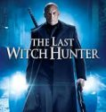 The Last Witch Hunter 2015