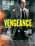 Vengeance: A Love Story 2017