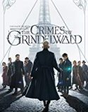 Fantastic Beasts 2: The Crimes of Grindelwald 2018