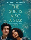 The Sun Is Also a Star (2019) online subtitrat hd