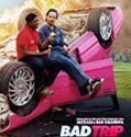 Bad Trip 2021 online subtitrat in romana